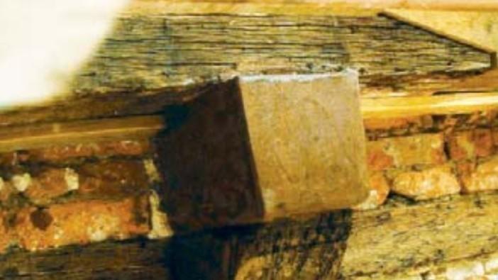 Holzschutz & Holzsanierung