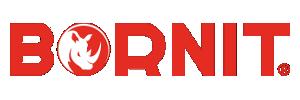 BORNIT-Werk Aschenborn GmbH